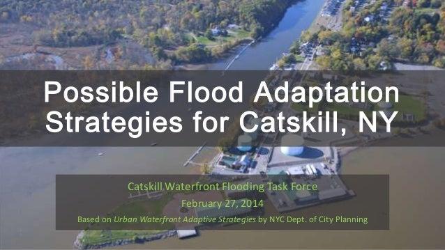 Possible flood adaptation strategies for Catskill, NY