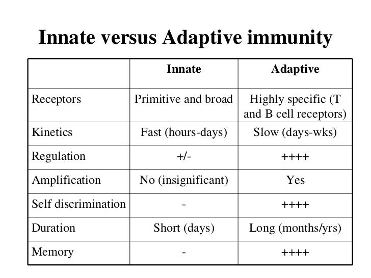 innate immunity adaptive difference - DriverLayer Search ...