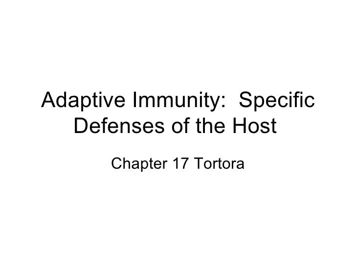 Adaptive Immunity Chapter 17 Tortora