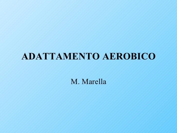 Adattamento aerobico