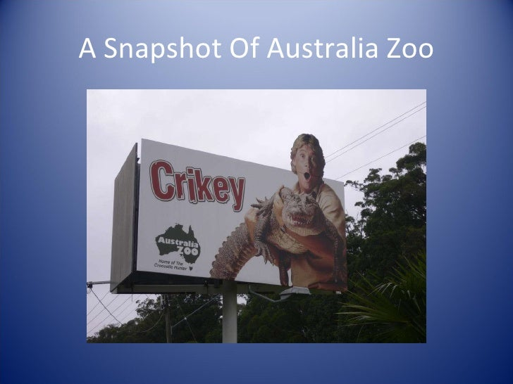 A Snapshot Of Australia Zoo