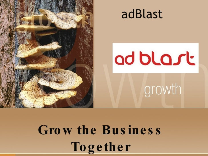 adBlast Grow the Business Together