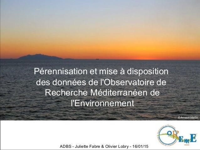 Pérennisation et mise à disposition des données de l'Observatoire de Recherche Méditerranéen de l'Environnement ADBS - Jul...