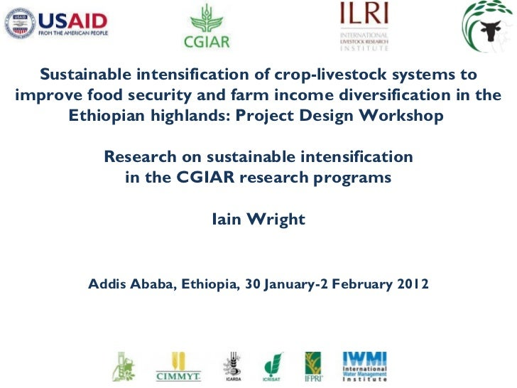 Research on sustainable intensification in the CGIAR research programs