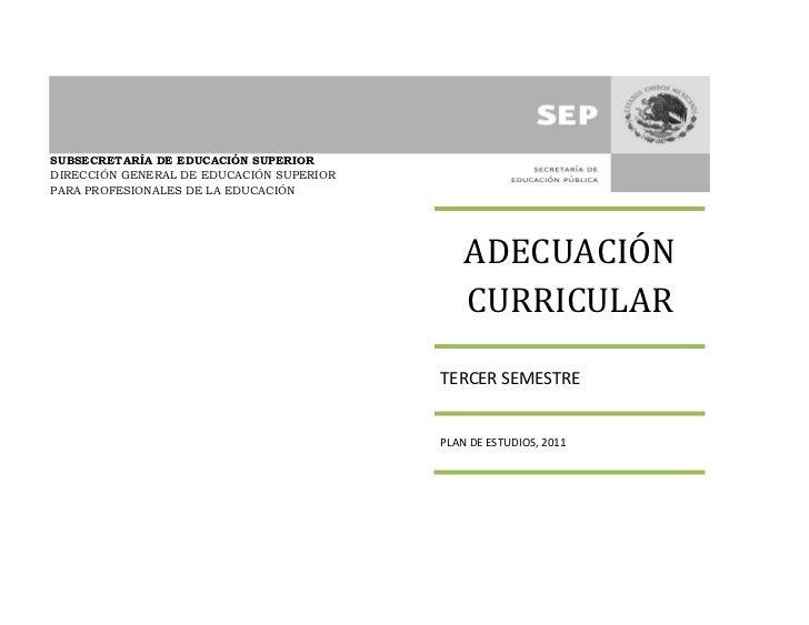 Adecuacion curricular lepri