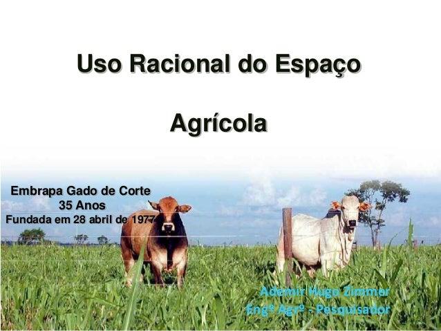 Uso Racional do Espaço                              AgrícolaEmbrapa Gado de Corte      35 AnosFundada em 28 abril de 1977 ...