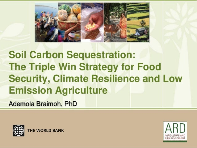 Soil Carbon Sequestration:The Triple Win Strategy for FoodSecurity, Climate Resilience and LowEmission AgricultureAdemola ...