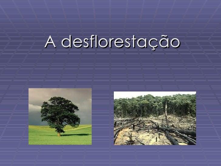 A desflorestação