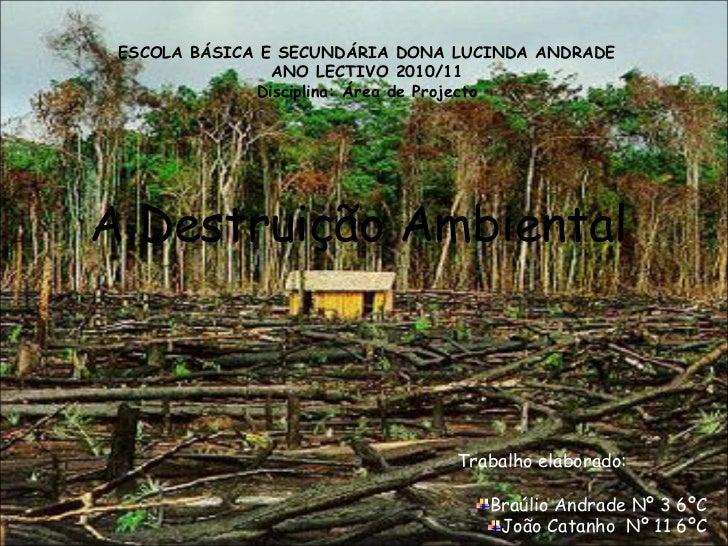 A Destruição Ambiental ESCOLA BÁSICA E SECUNDÁRIA DONA LUCINDA ANDRADE ANO LECTIVO 2010/11 Disciplina: Área de Projecto <u...