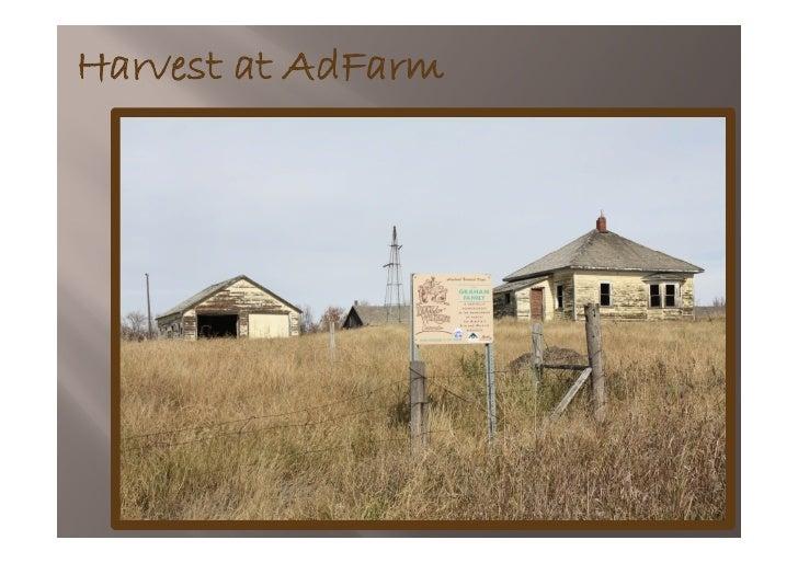 Harvest at AdFarm