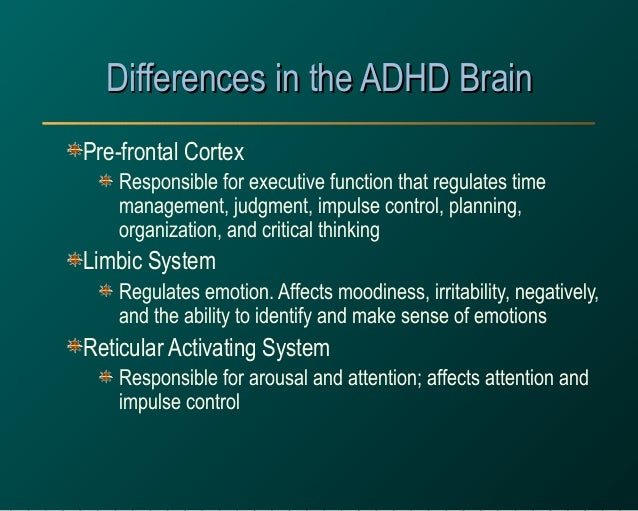 ADHD: Everything You Need to Know