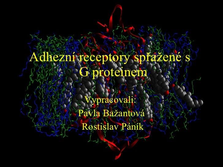 Adhezní receptory spřažené s   G proteinem Vypracovali:  Pavla Bažantová Rostislav Páník