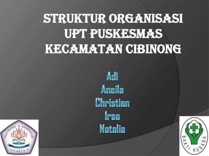 Analisa Struktur Organisasi UPT PUSKESMAS yg terkait PMM