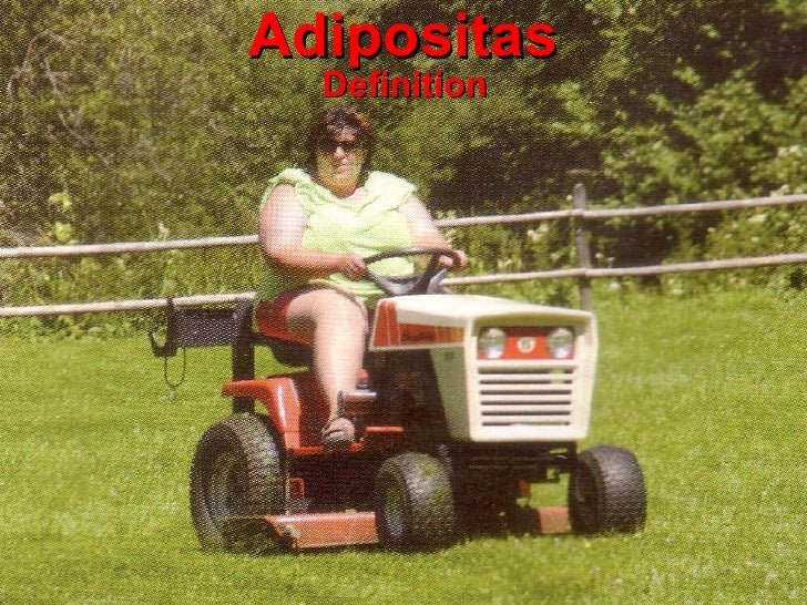 Adipositas Definition