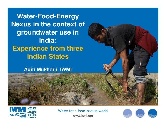 Water-Food-Energy Nexus in the context of groundwater use in India: Experience from three Indian States