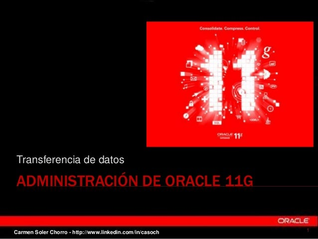 Transferencia de datos en Oracle