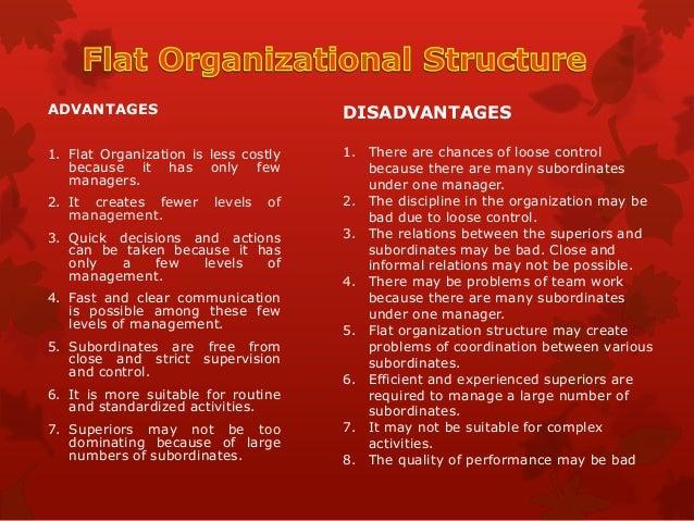Organizational Structure: Zappos