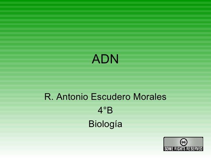 ADN R. Antonio Escudero Morales 4°B Biología