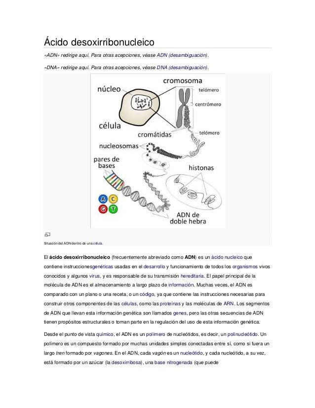 Ácido desoxirribonucleico«ADN» redirige aquí. Para otras acepciones, véase ADN (desambiguación).«DNA» redirige aquí. Para ...