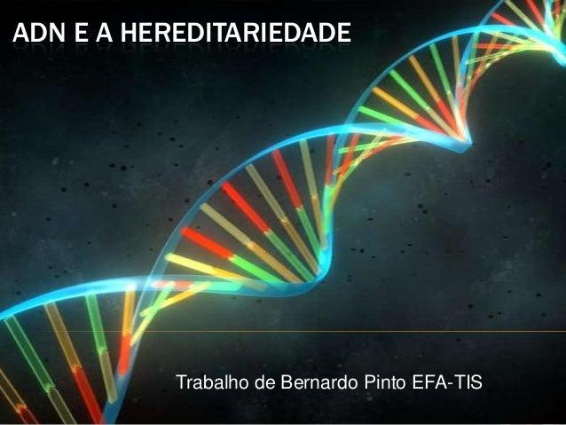 ADN E A HEREDITARIEDADE Trabalho de Bernardo Pinto EFA-TIS