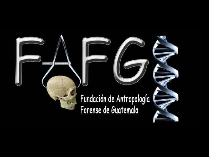 Fundación de AntropologíaForense de GuatemalaDepartamento de GenéticaForense2012