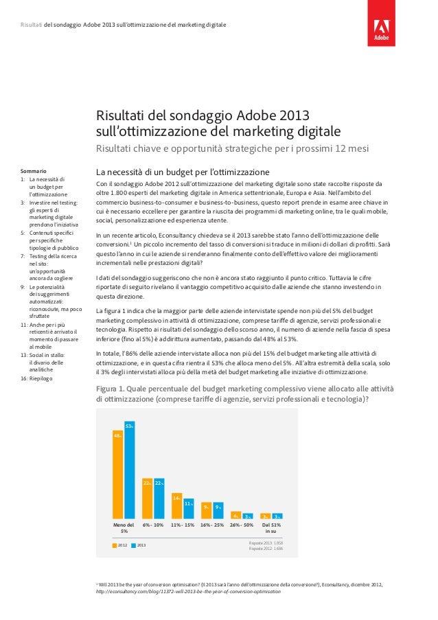 Risultati del sondaggio Adobe 2013 sull'ottimizzazione del marketing digitale  Risultati del sondaggio Adobe 2013 sull'ott...
