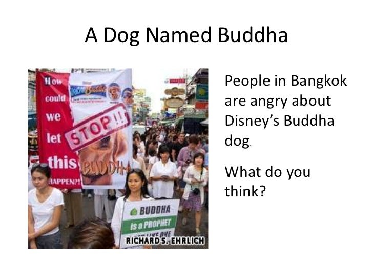 A Dog Named Buddha            People in Bangkok            are angry about            Disney's Buddha            dog.     ...