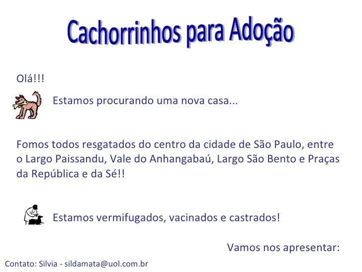 Estamos procurando uma nova casa... Fomos todos resgatados do centro da cidade de São Paulo, entre o Largo Paissandu, Vale...