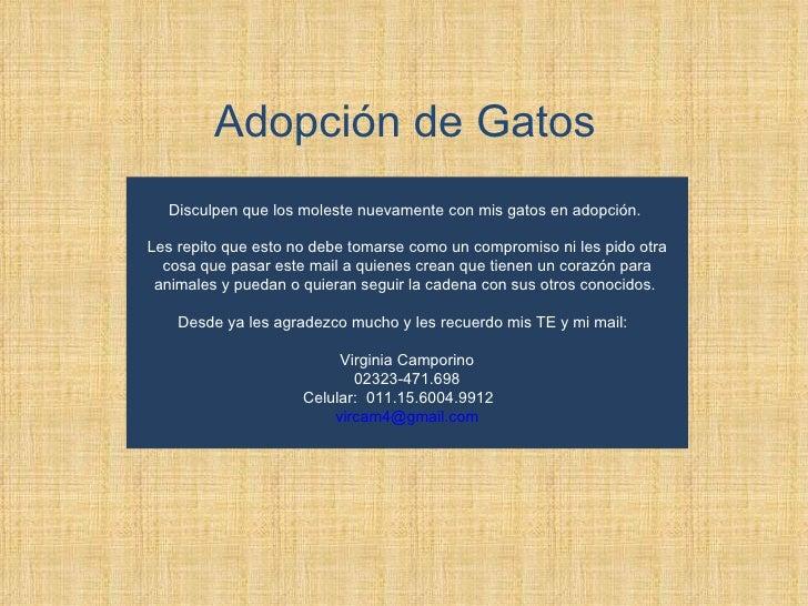 Adopción de Gatos Disculpen que los moleste nuevamente con mis gatos en adopción.  Les repito que esto no debe tomarse com...