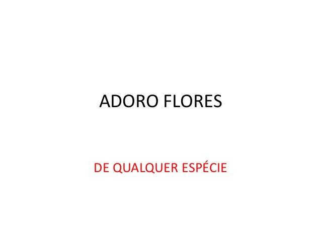 ADORO FLORES  DE QUALQUER ESPÉCIE