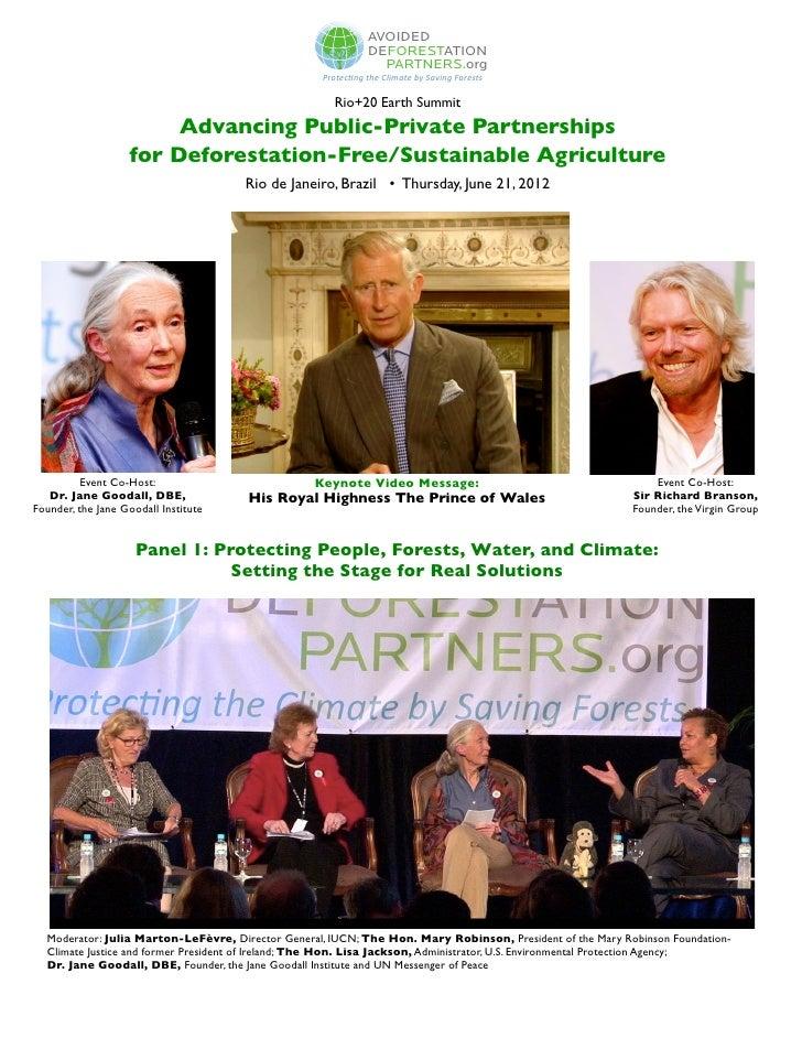 ADP Earth Summit Event in Rio de Janeiro, Brazil