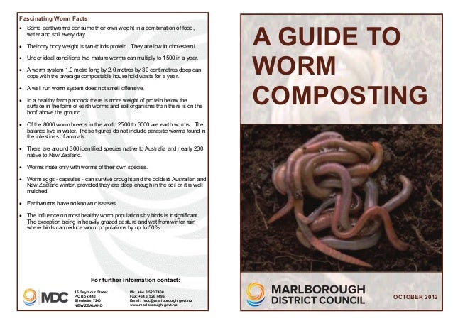 A Guide to Worm Composting