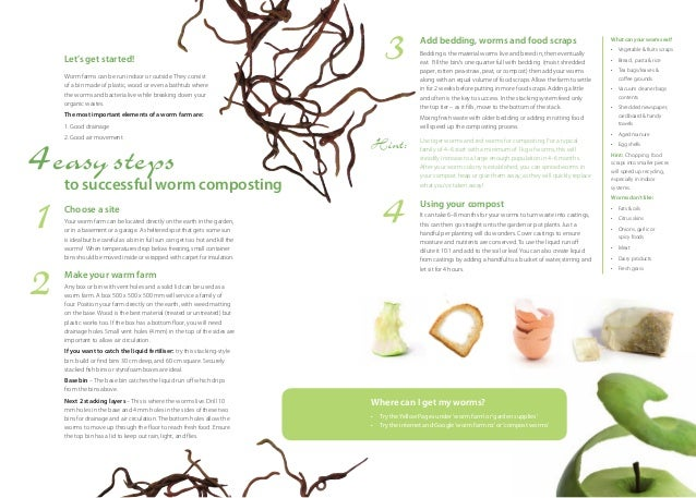 Four Easy Steps to Successful Worm Composting