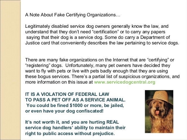 Fake Service Dog Documentation