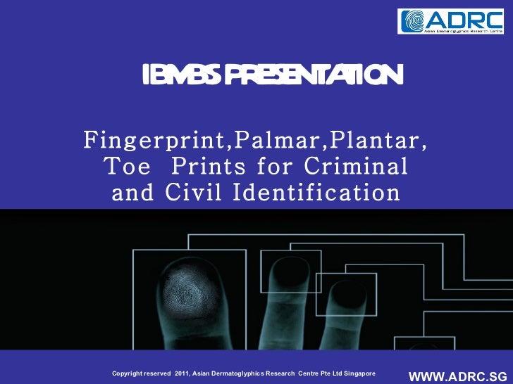 IBMBS PRESENTATION Fingerprint,Palmar,Plantar, Toe  Prints for Criminal and Civil Identification