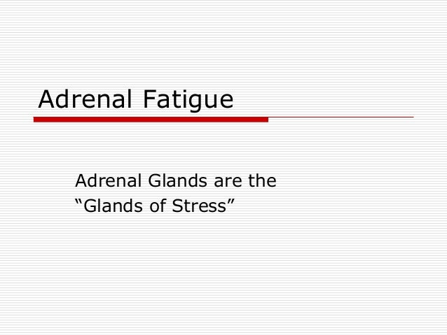 "Adrenal Fatigue Adrenal Glands are the ""Glands of Stress"""