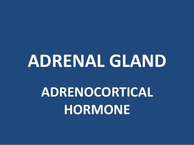 ADRENAL GLAND ADRENOCORTICAL HORMONE