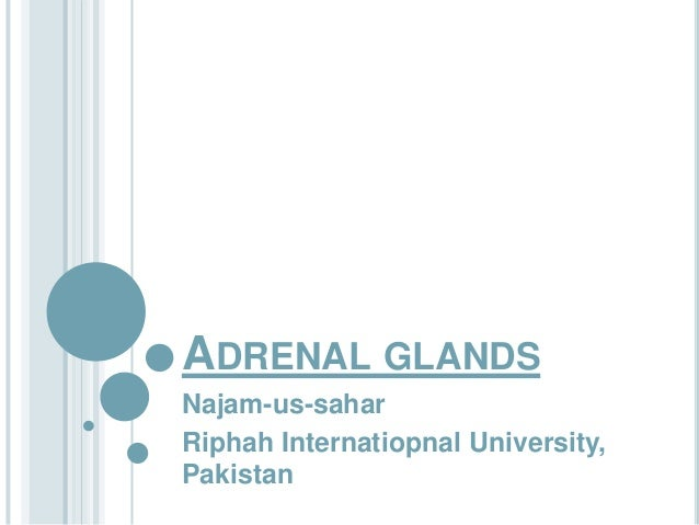 ADRENAL GLANDSNajam-us-saharRiphah Internatiopnal University,Pakistan