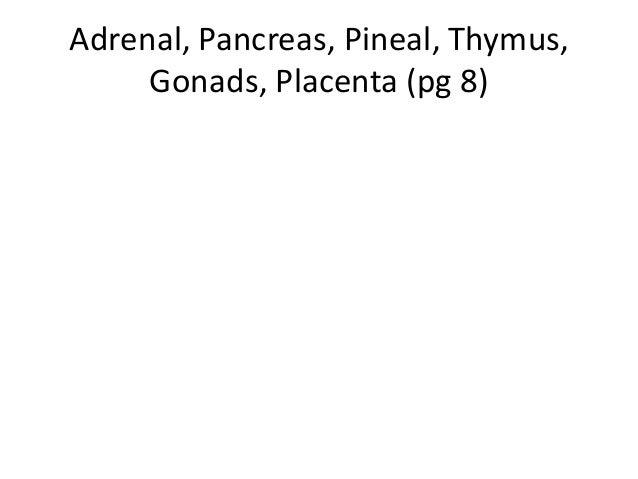 Adrenal, pancreas, pineal, etc
