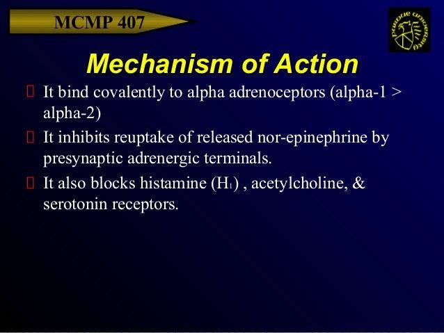 beta blockers mechanism of action pdf
