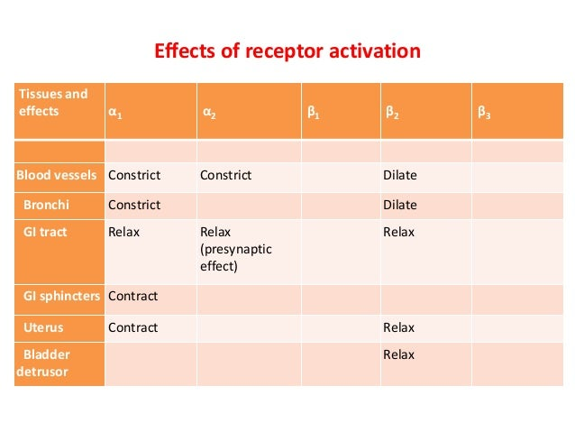 Adrenergic receptors and its modulators