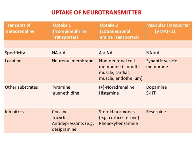 steroid drugs for muscle building