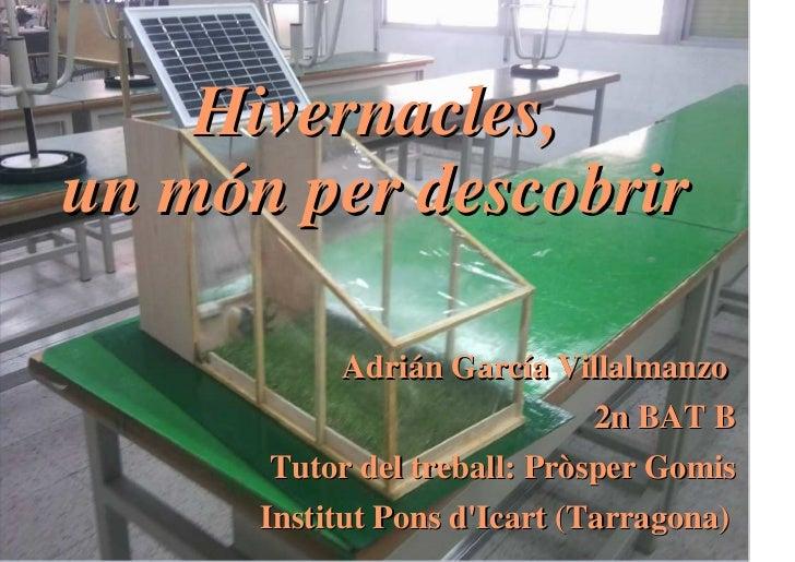 Hivernacles,un món per descobrir           Adrián García Villalmanzo                           2n BAT B       Tutor del tr...