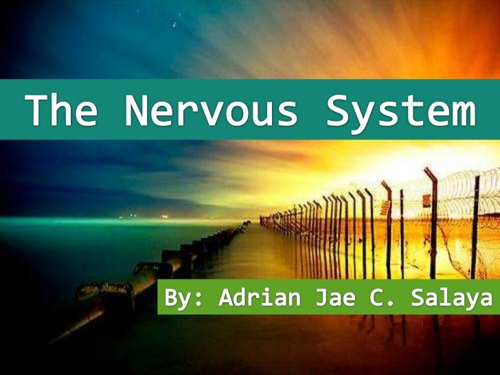 Nervous system is the chief controlling andcoordinating system of the body. It controlsand regulates all activities of the...