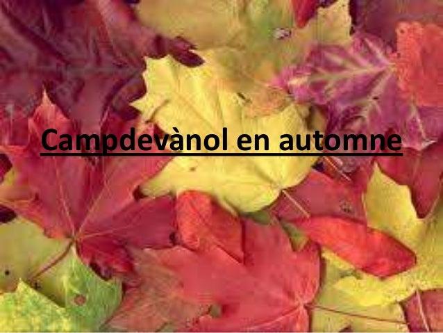 Campdevànol en automne