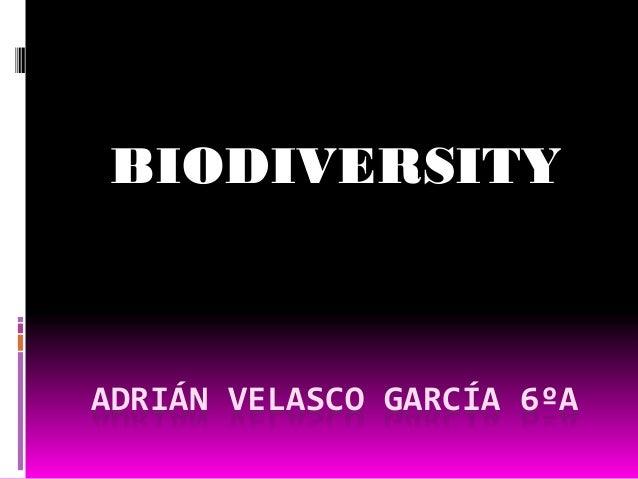 ADRIÁN VELASCO GARCÍA 6ºA BIODIVERSITY