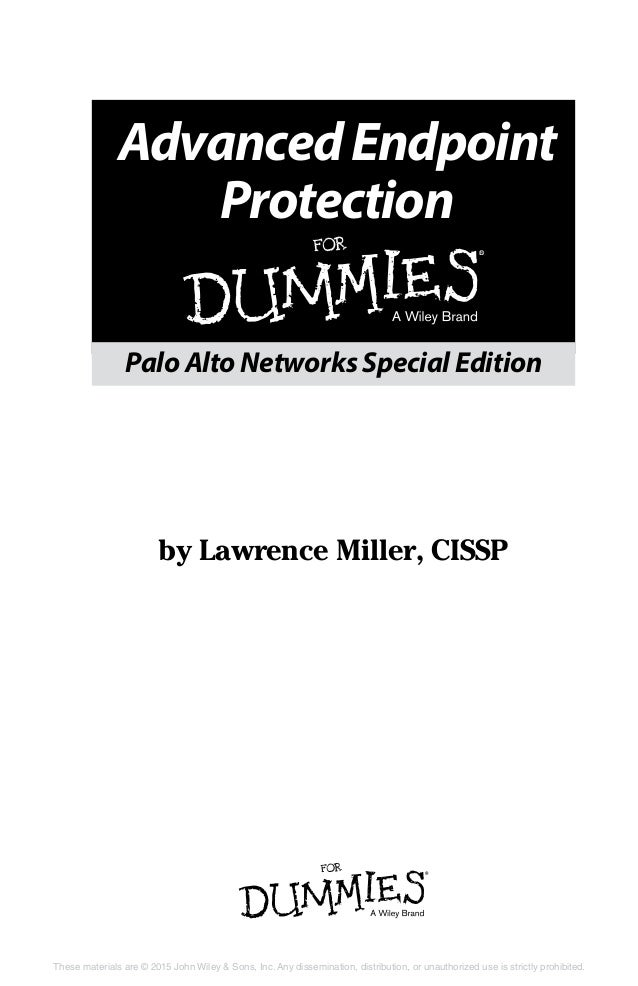 security protecting computer systems from viruses pdf