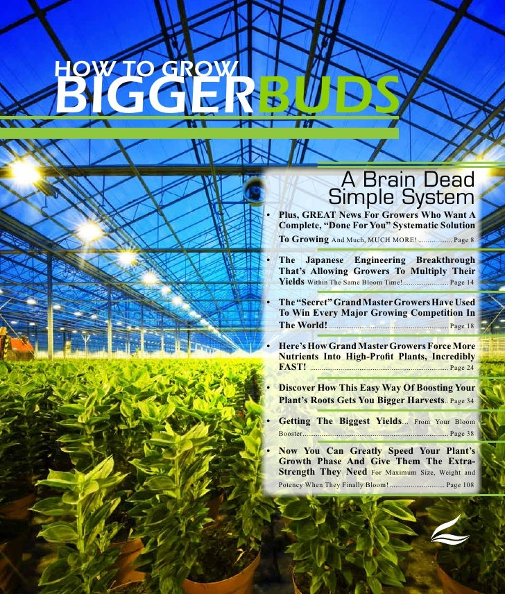 Advanced Nutrients thesystemmagalog