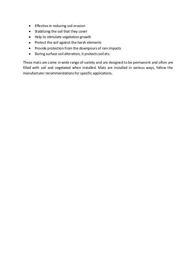 Live essay help