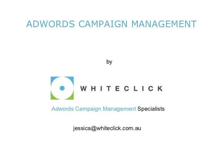 ADWORDS CAMPAIGN MANAGEMENT <ul><li>by </li></ul> Adwords Campaign Management   Specialists [email_address]